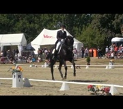 Whisper winning HOY 2010. Grand Prix Freestyle